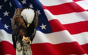 Land of the free...because of the Brave